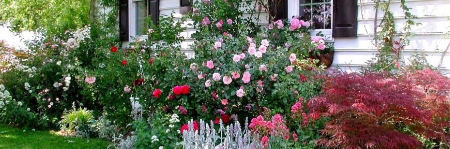 kertben