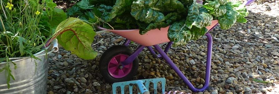 kertészkedés gyerekeknek