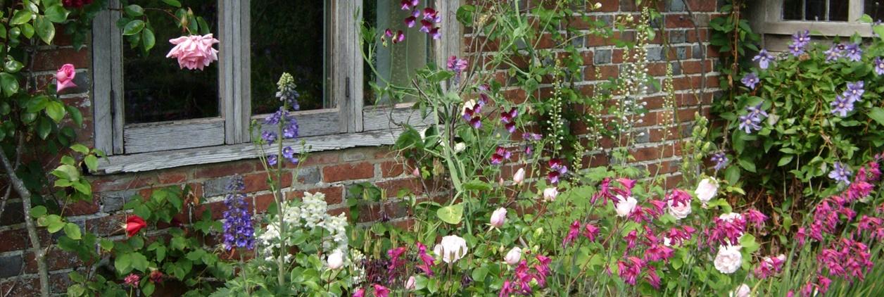 növény összeállítások kerttípusokhoz
