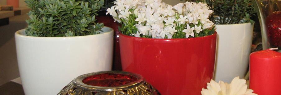 virágtartók, vázák