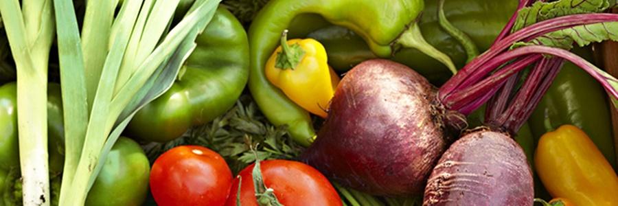 zöldség magok