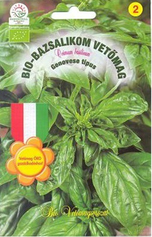 Bio bazsalikom -'Genovese'
