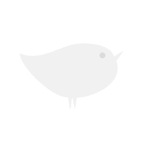 Fehér-tarka levelű japán kecskerágó 'Kathy'