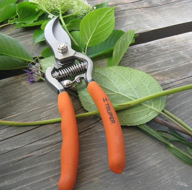 Rózsa metszőolló 17 cm mellévágó