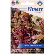 Saláta - tölgylevelű, piros