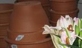 agyag és kerámia cserepek, fa, fém, üveg ültető edények