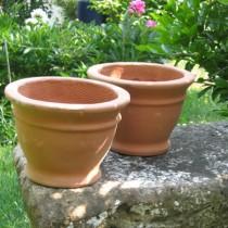 Mediterrán cserép Bell Pot 20 cm